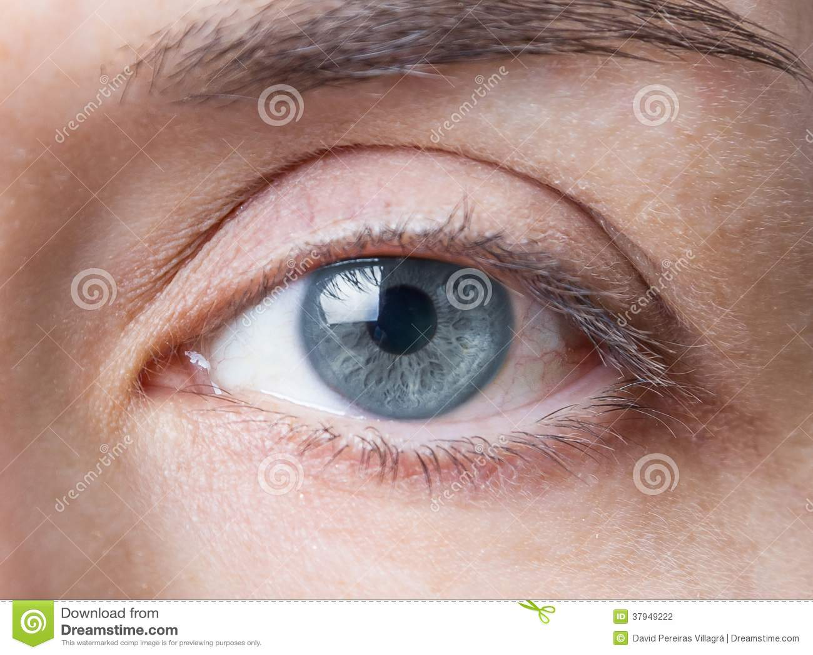 Zbliżenie żeński naturalny niebieskie oko bez makeup