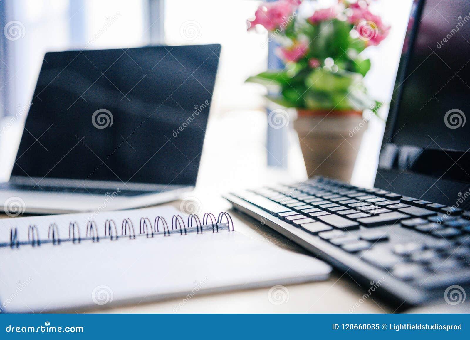 Zbliżenie strzał pusty podręcznik, laptop, kwiaty w garnku, komputer, komputerowa klawiatura i komputer mysz,