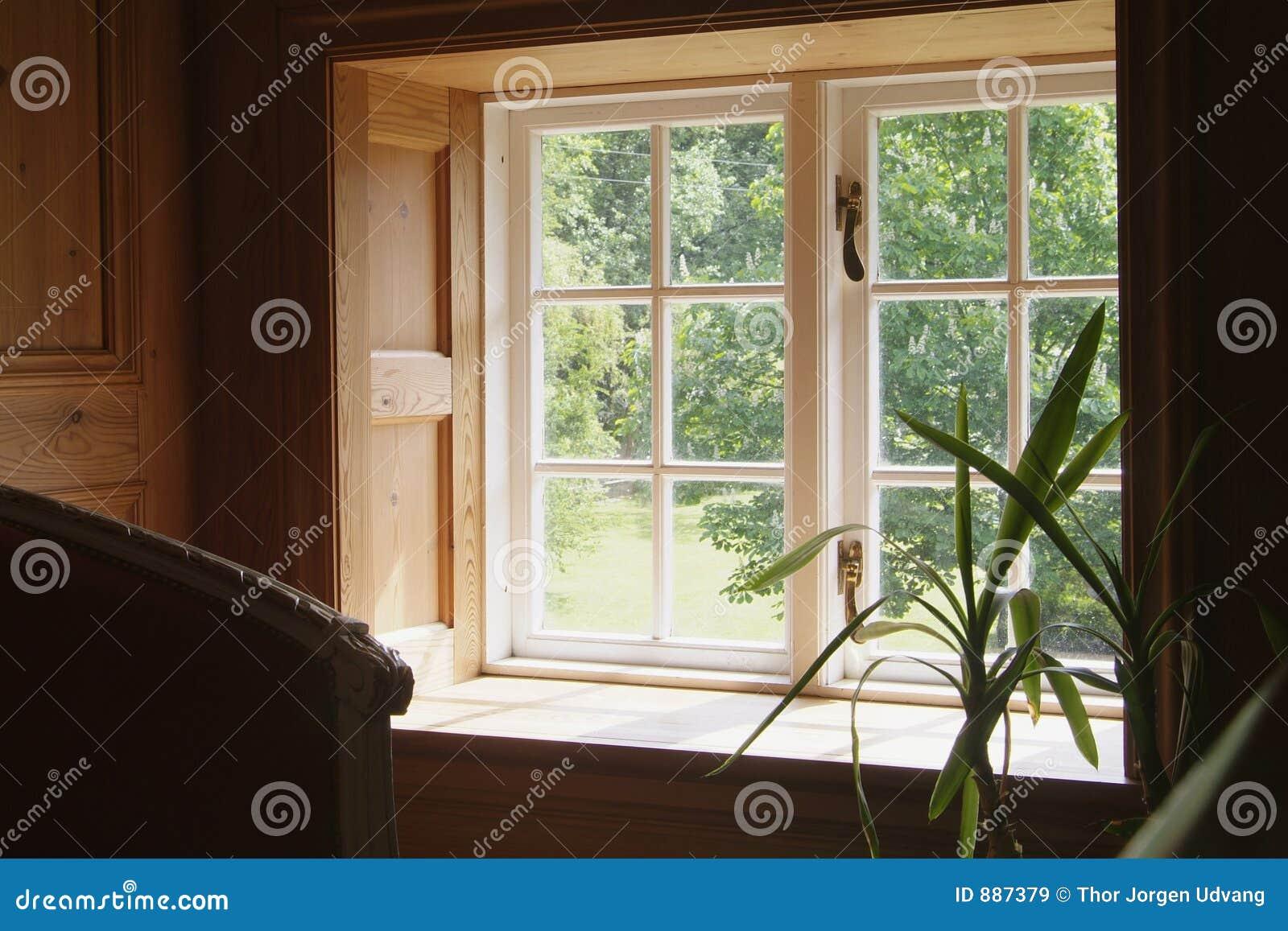Zdaniem okno