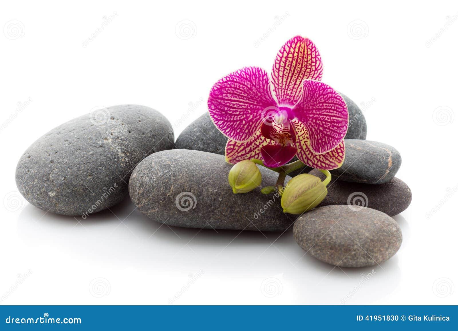 Zdrojów Kamienie