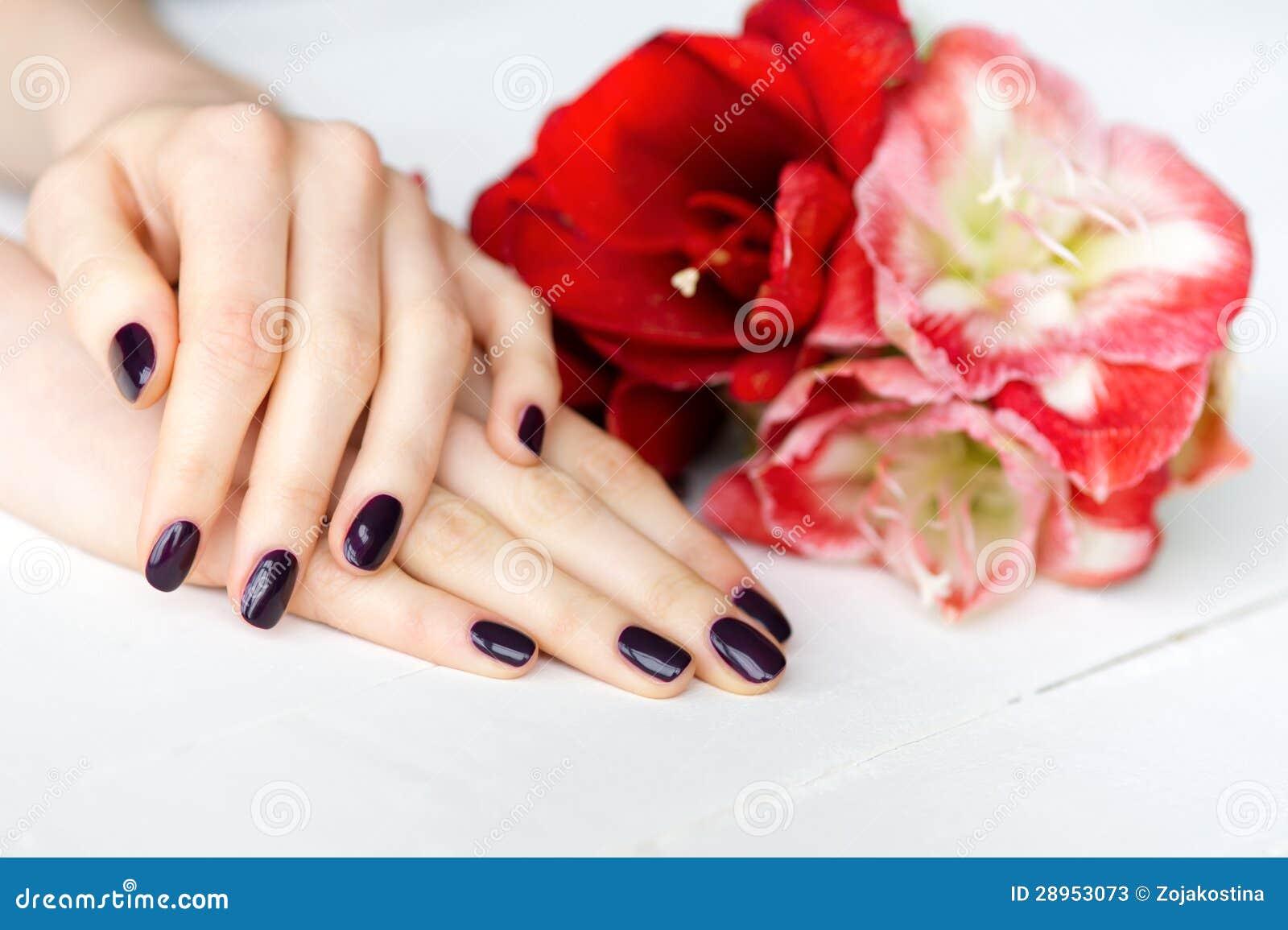 Zdroju manicure z czerwonych i białych kwiatów zbliżeniem
