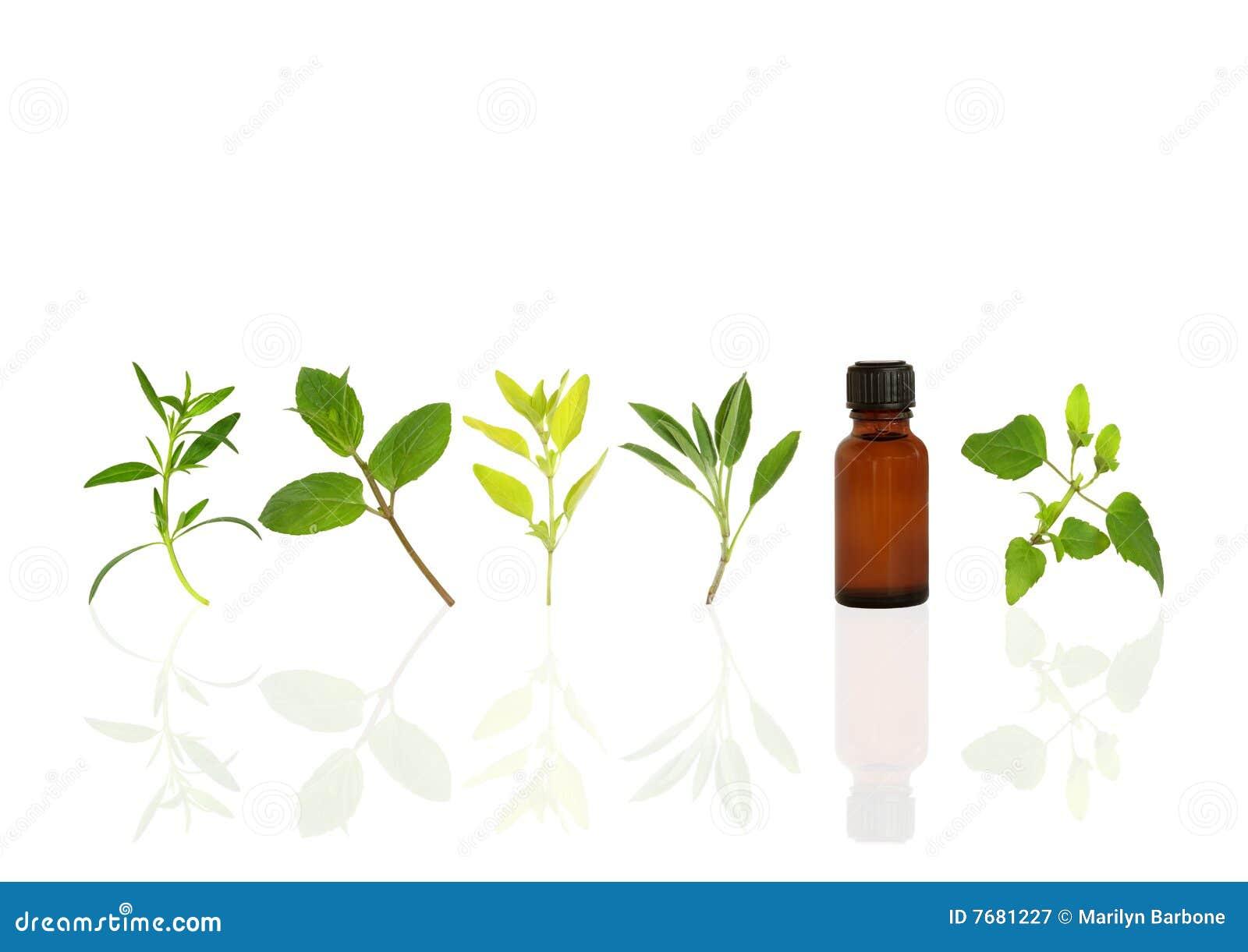 Zdrowie alternatywni ziele