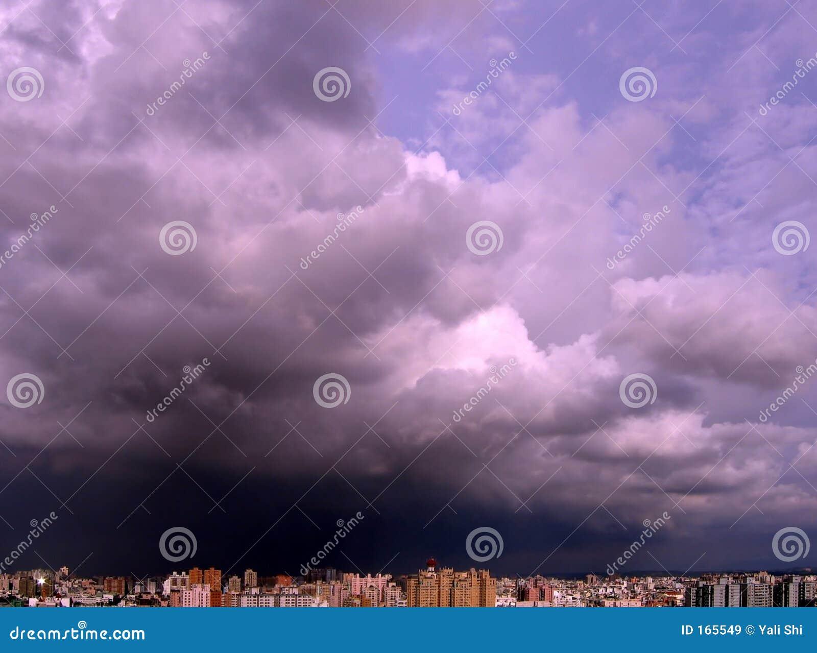 Zebrać burzę