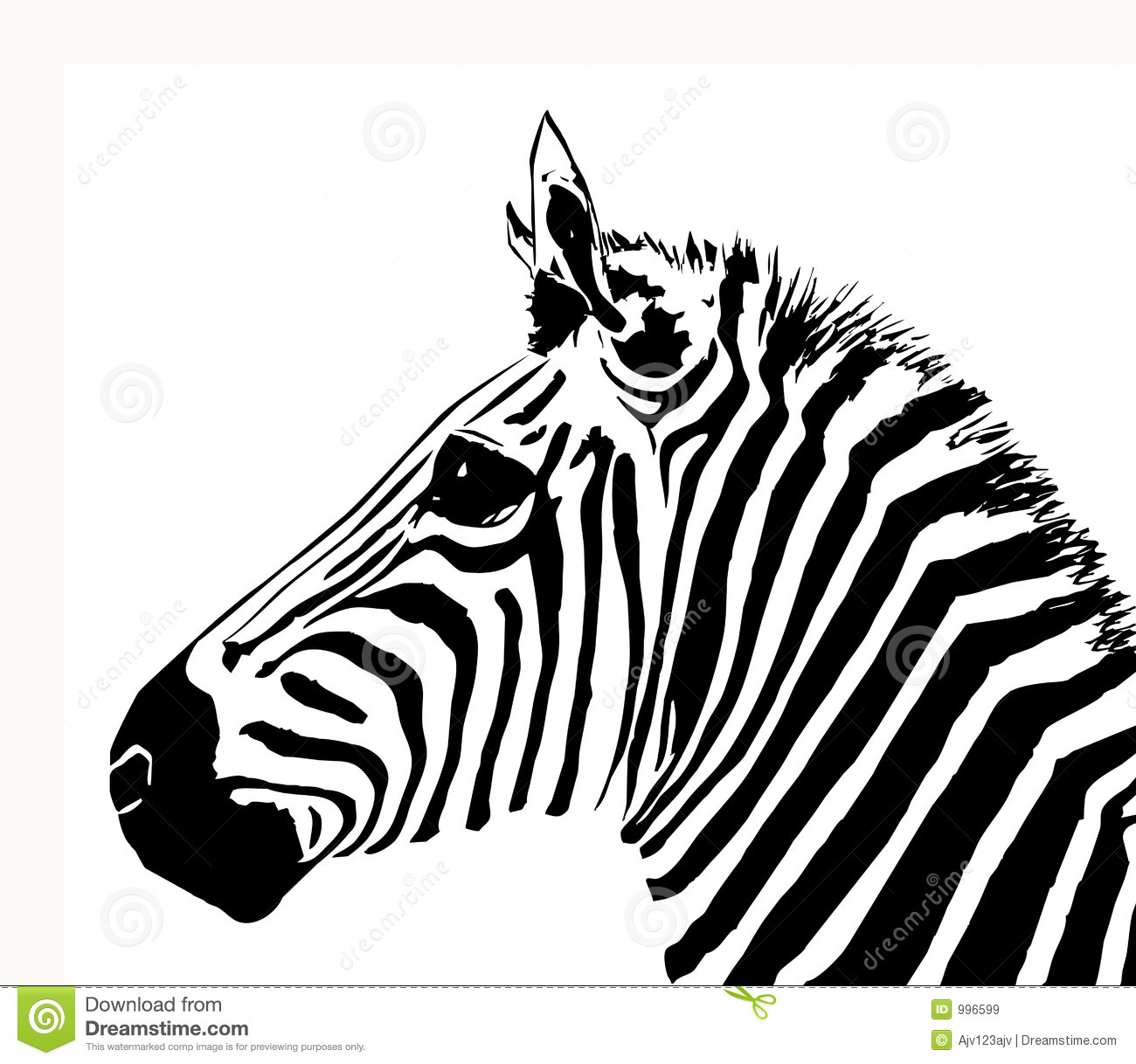 Zebra Royalty Free Stock Images - Image: 996599