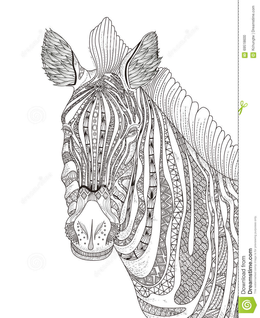 Zebra adult coloring page stock illustration image 69518600 for Coloring pages of zebra stripes