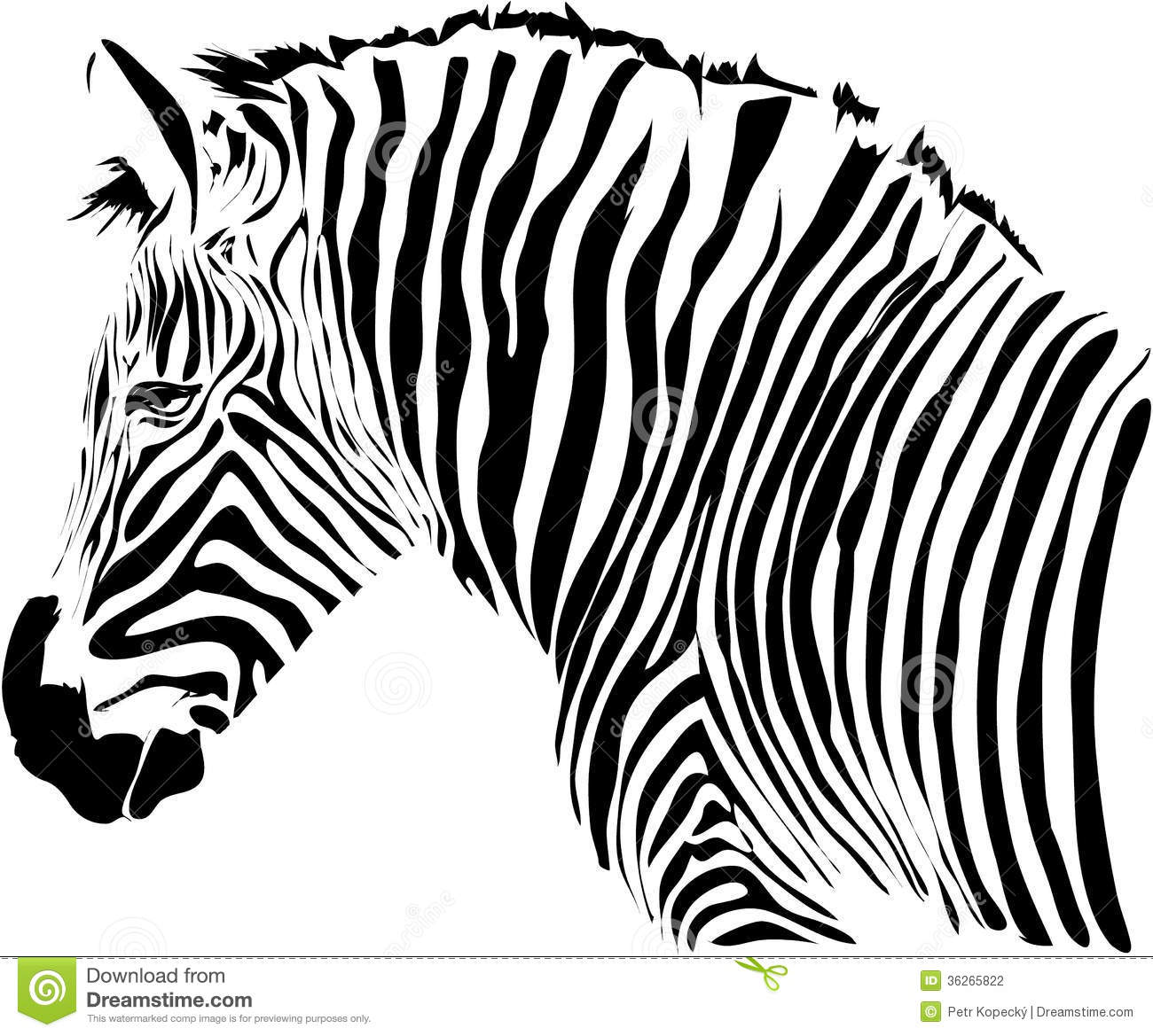 Stock Photography Zebra Illustration Nice Head Isolated White Background Image36265822 together with Quick Tip Make A Seamless Argyle Pattern Vector 3880 furthermore Cartoon Stencils further Fruits And Veggies together with Patrones Para Bordar. on free painting patterns