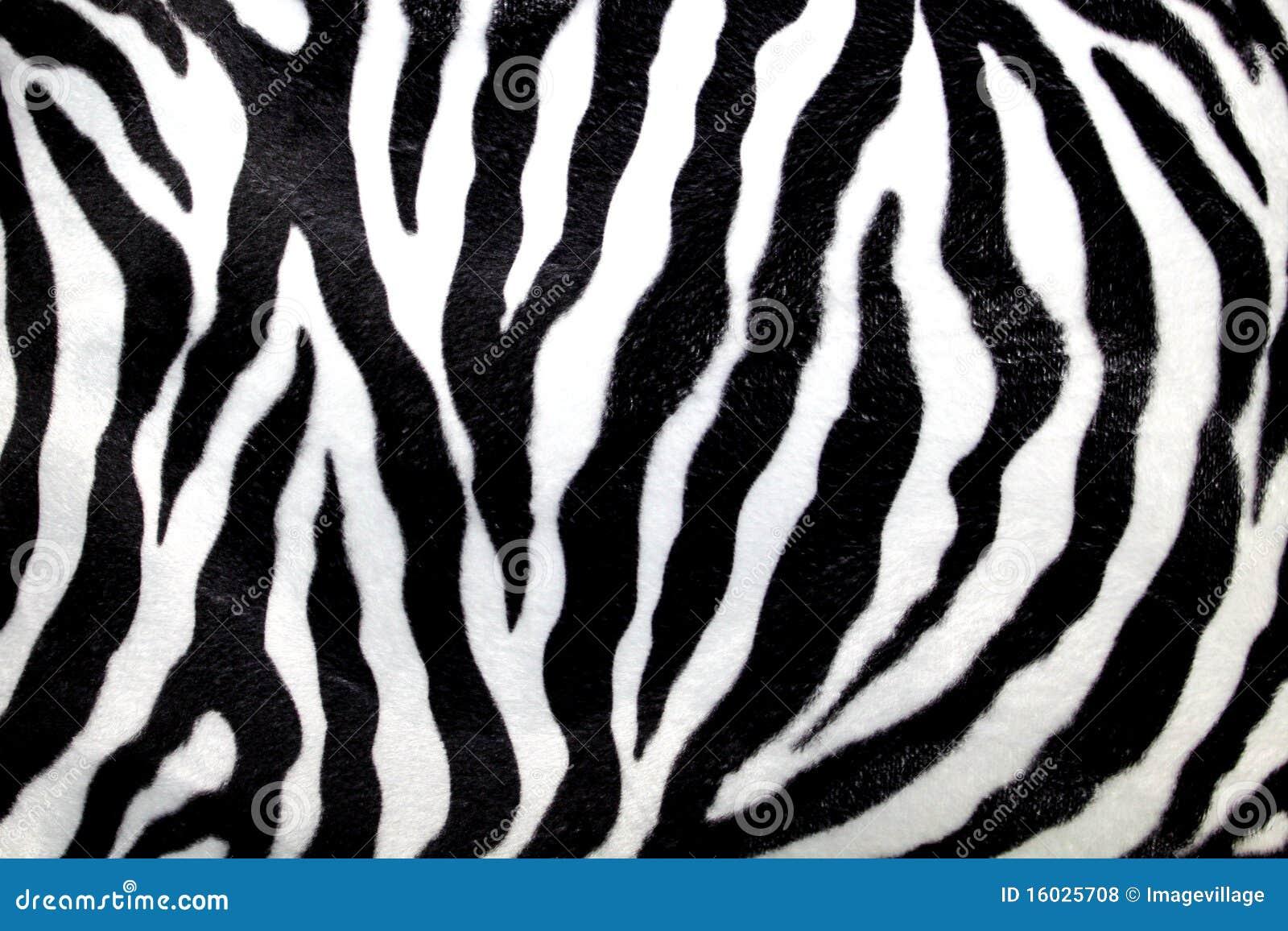 Zebra pattern stock photo image of element animal - Cuadros de cebras ...