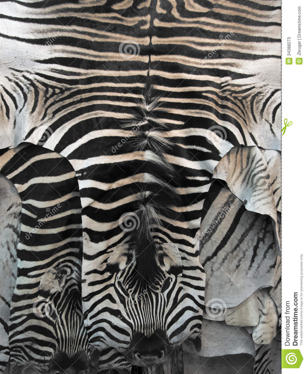 Zebra Skin Rug Stock Photos