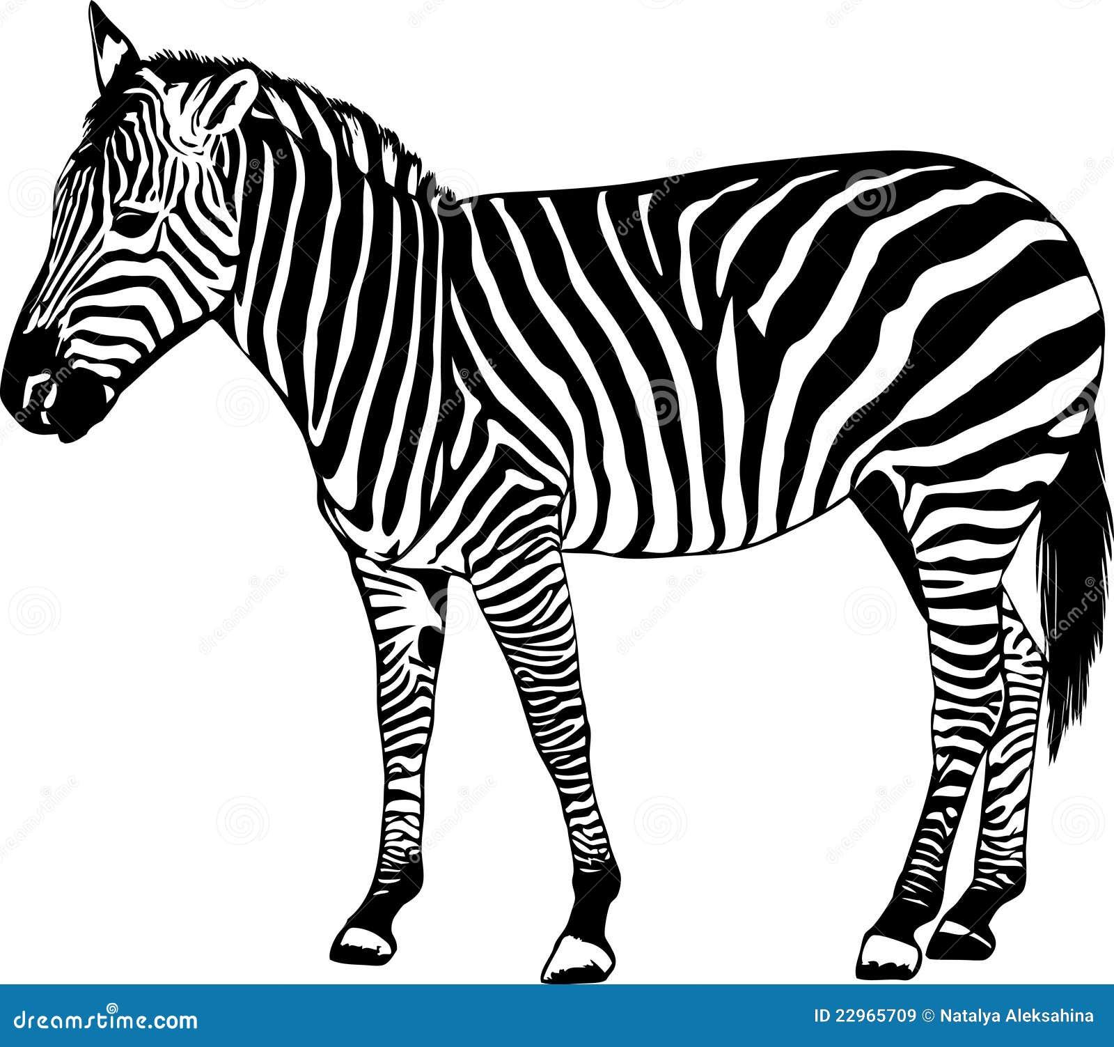 Скачать звук зебра