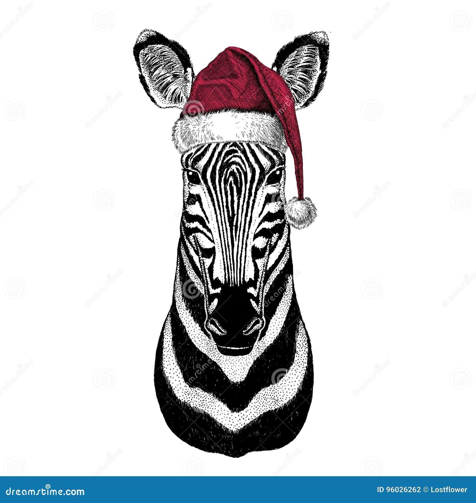 Zebry Koński Bożenarodzeniowy ilustracyjny dzikie zwierzę jest ubranym bożego narodzenia Santa Claus kapeluszowej Czerwonej zimy