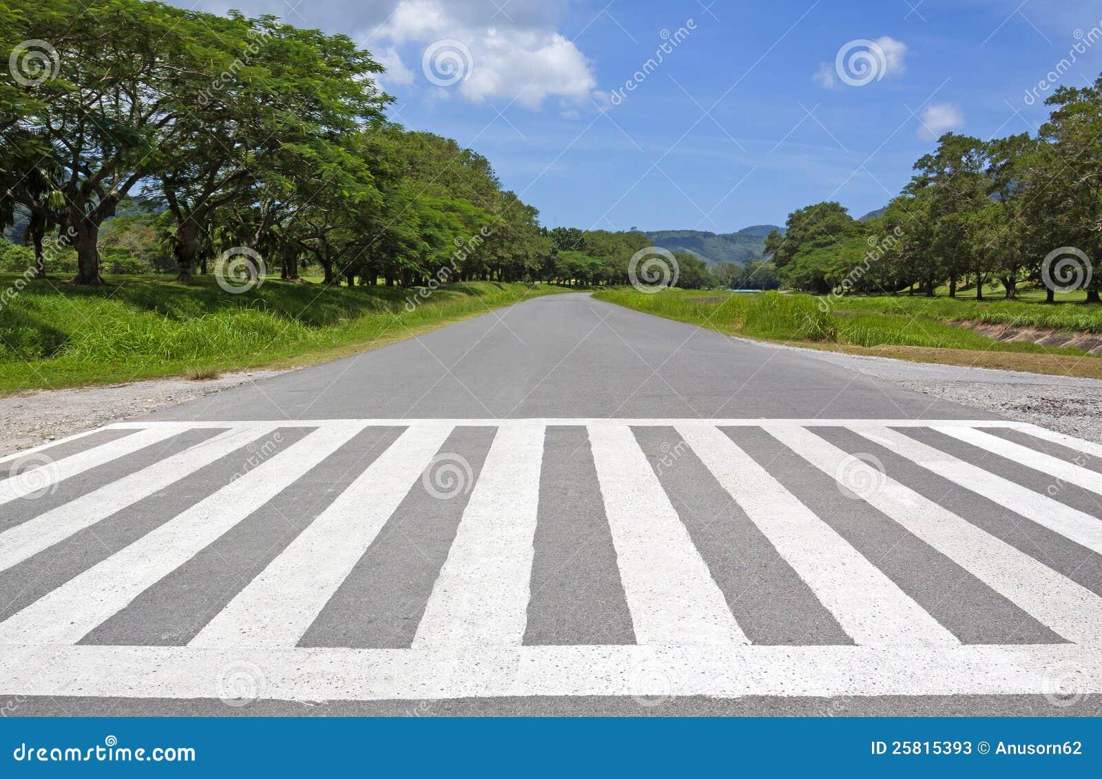Zebry ruch drogowy spaceru sposób, przecinający sposób