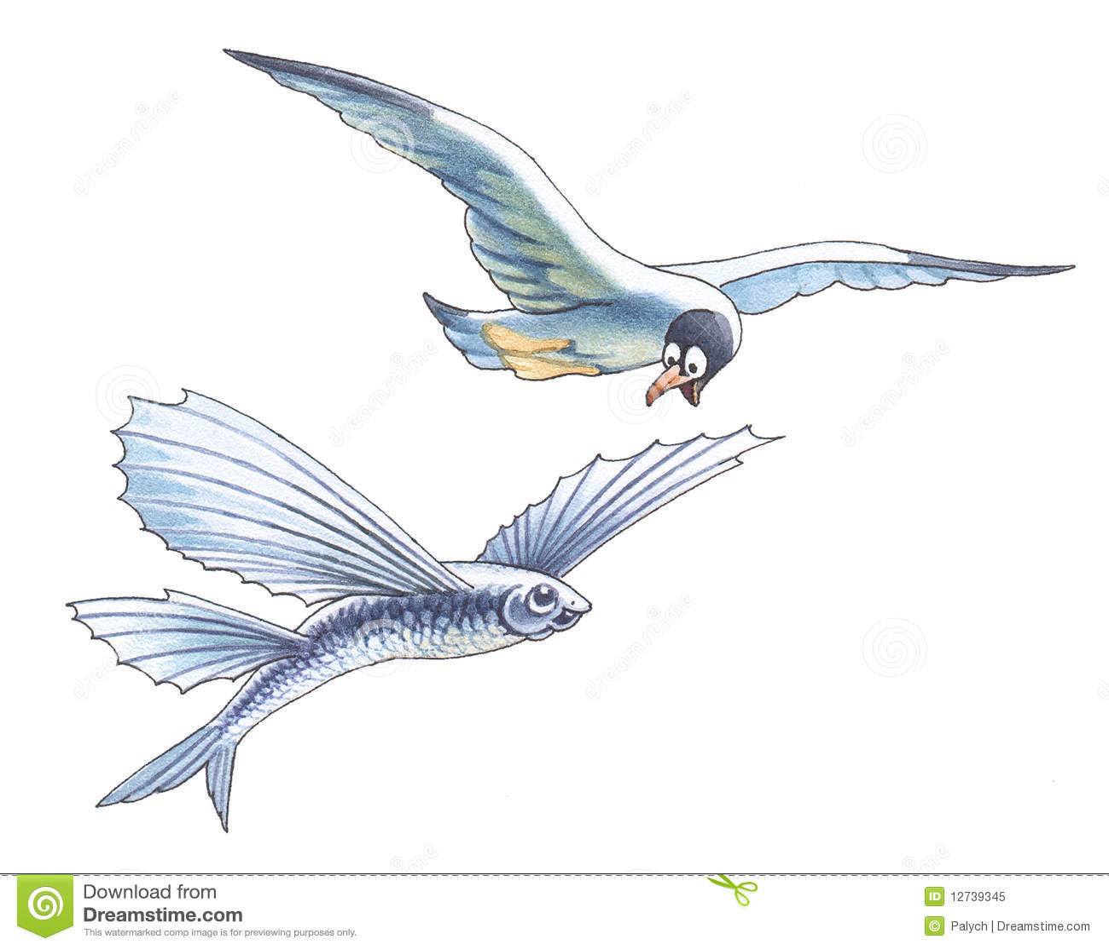 Zeemeeuw en vliegende vissen