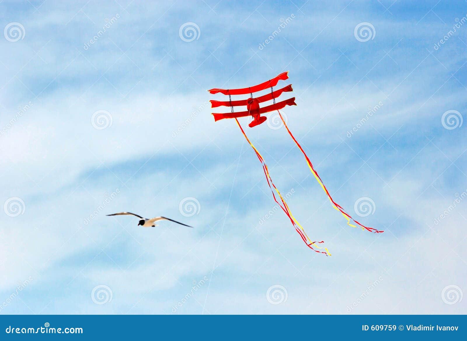 Zeemeeuw en vliegende vlieger