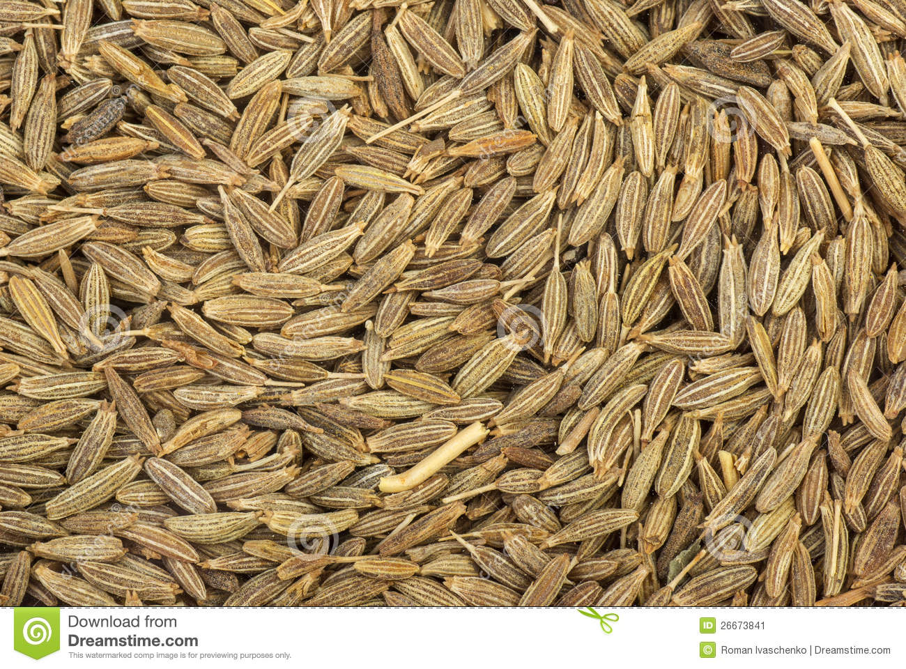 Zeera seeds close up stock image image 26673841