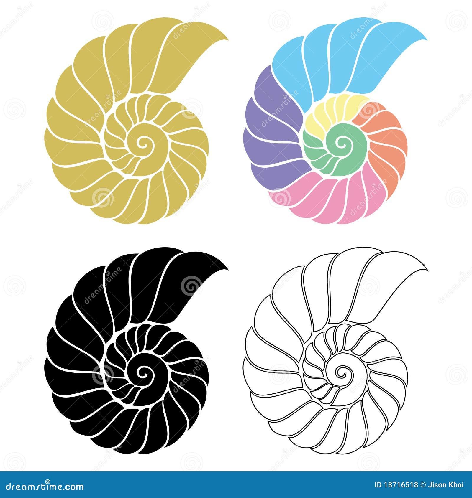 Zeeschelp Nautilus