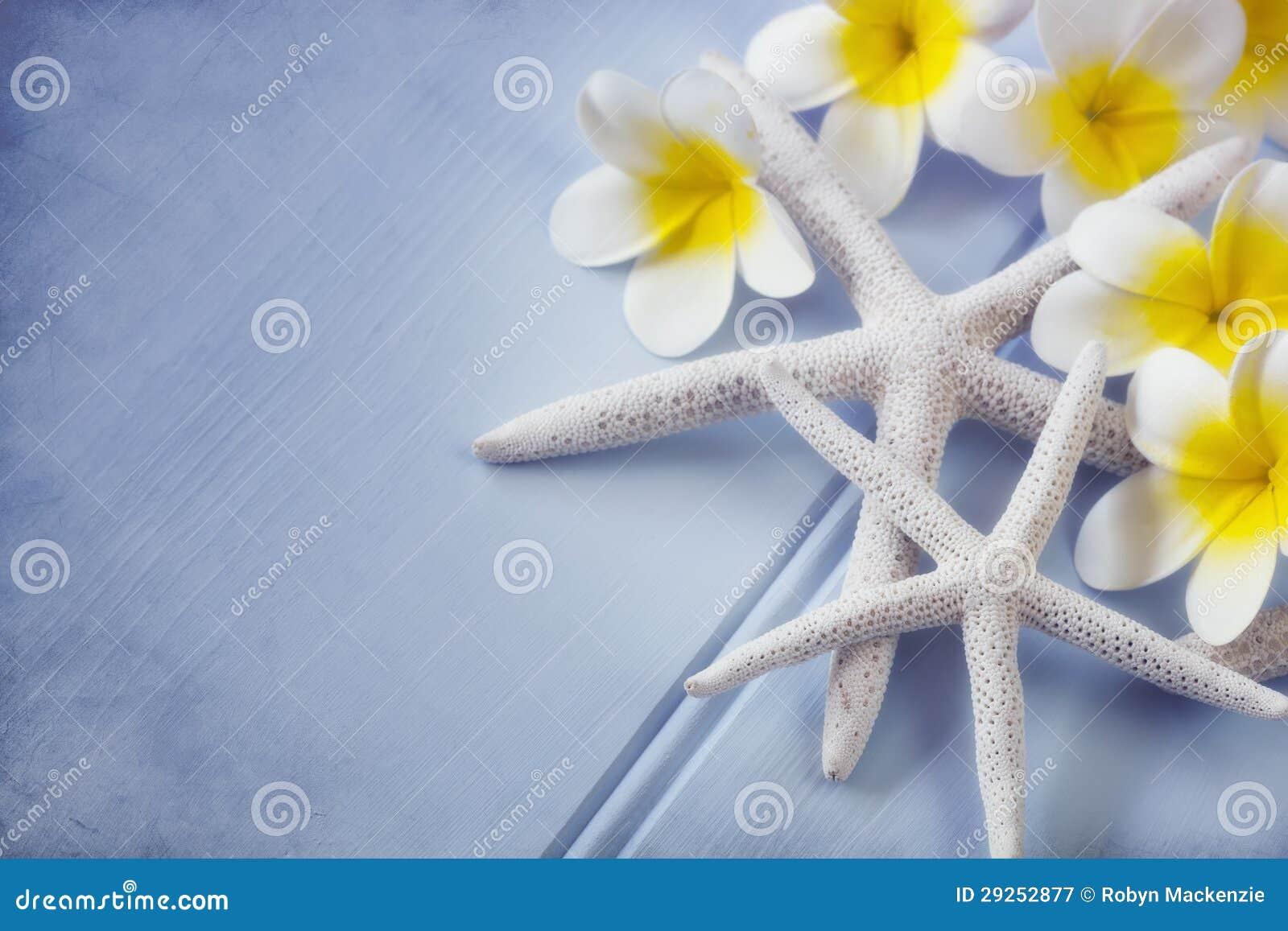 Zeester en Bloemen Plumeria