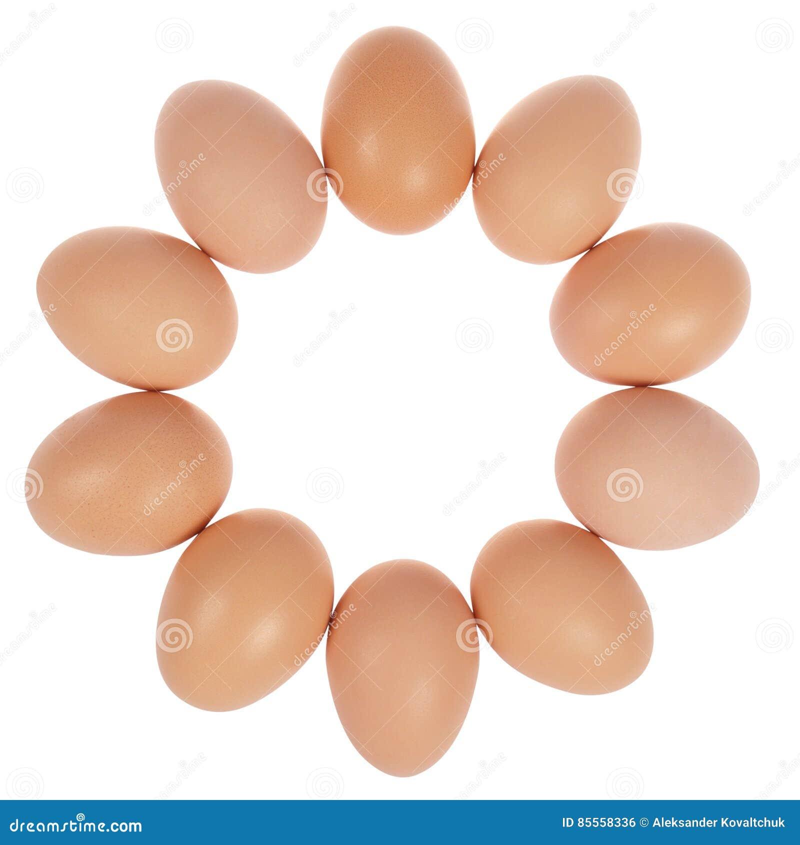 Zehn Eier im Kreis