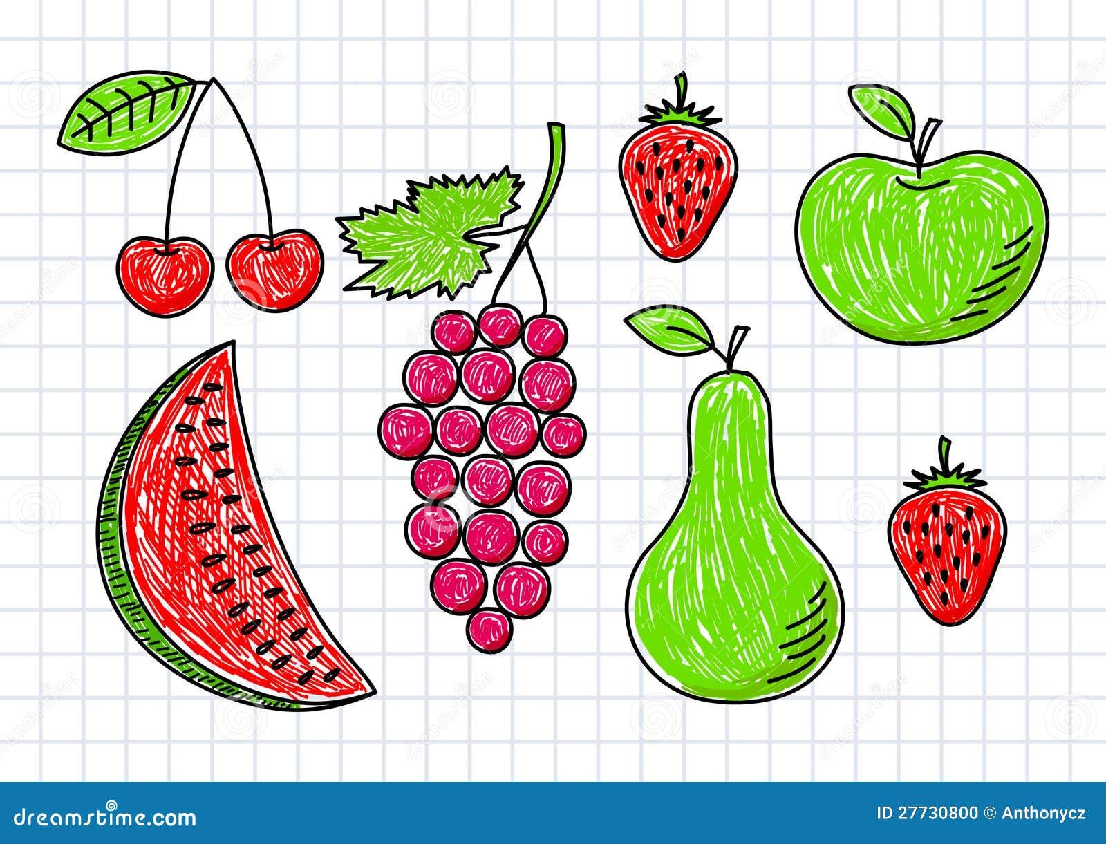 Zeichnung der Früchte
