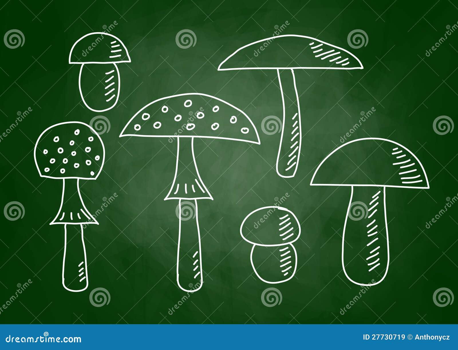 Zeichnung der Pilze