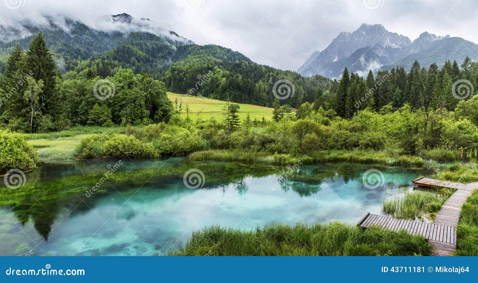 Zelenci staw blisko Kranjska Gora w Triglav parku narodowym