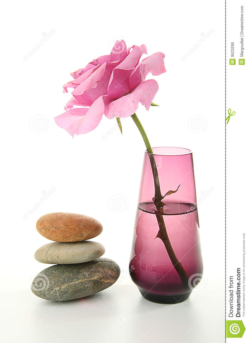 Zen Atmosphere Vase And Rose Stock Image Image 9523299