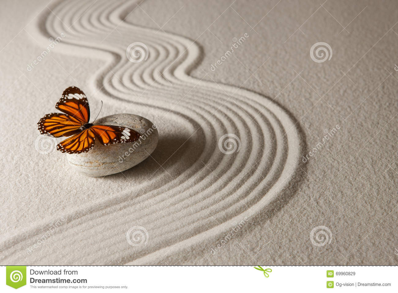 Zen butterfly stock image. Image of artistic, rock ... Mini Japanese Rock Garden