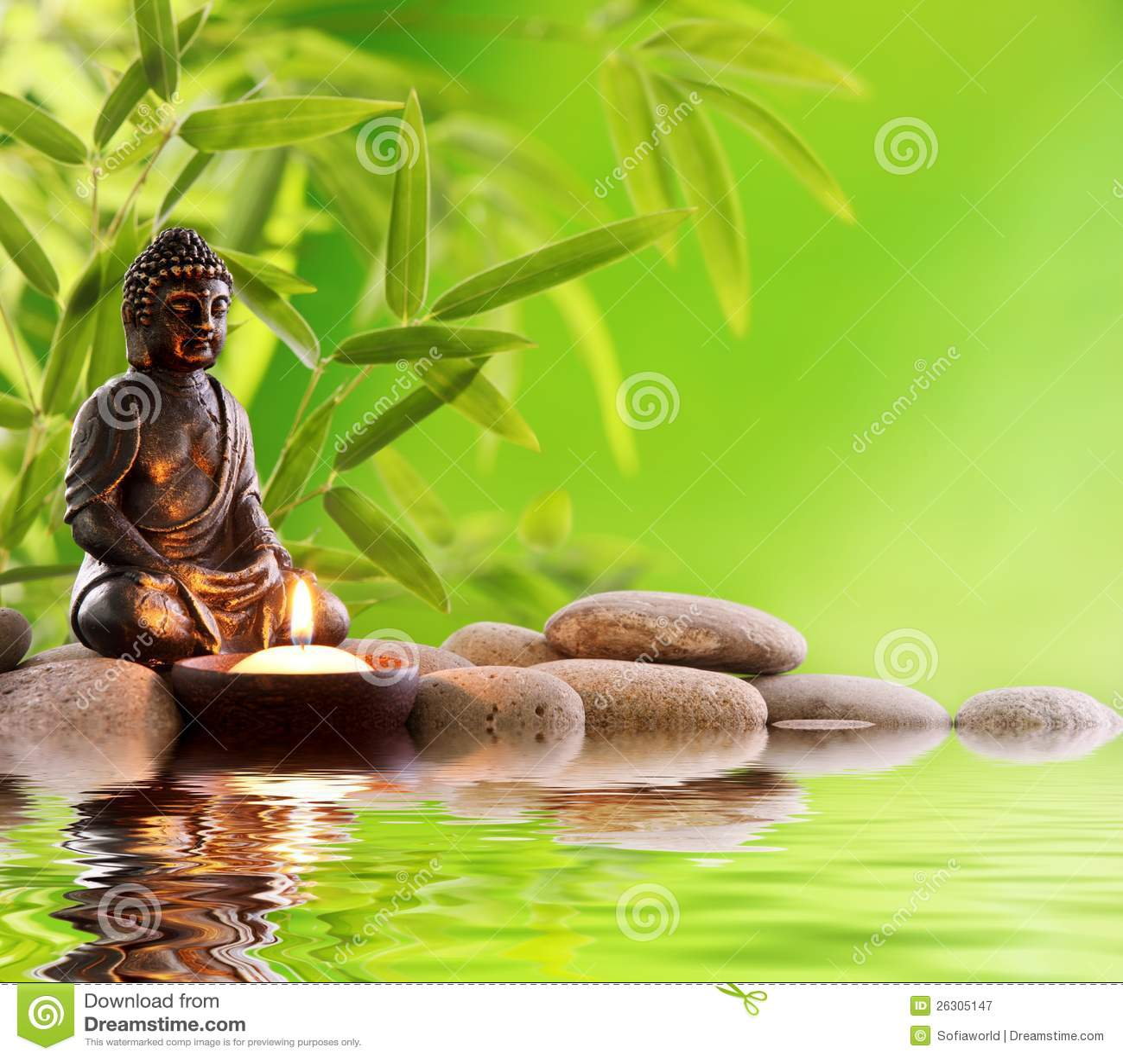 Zen de Buddha