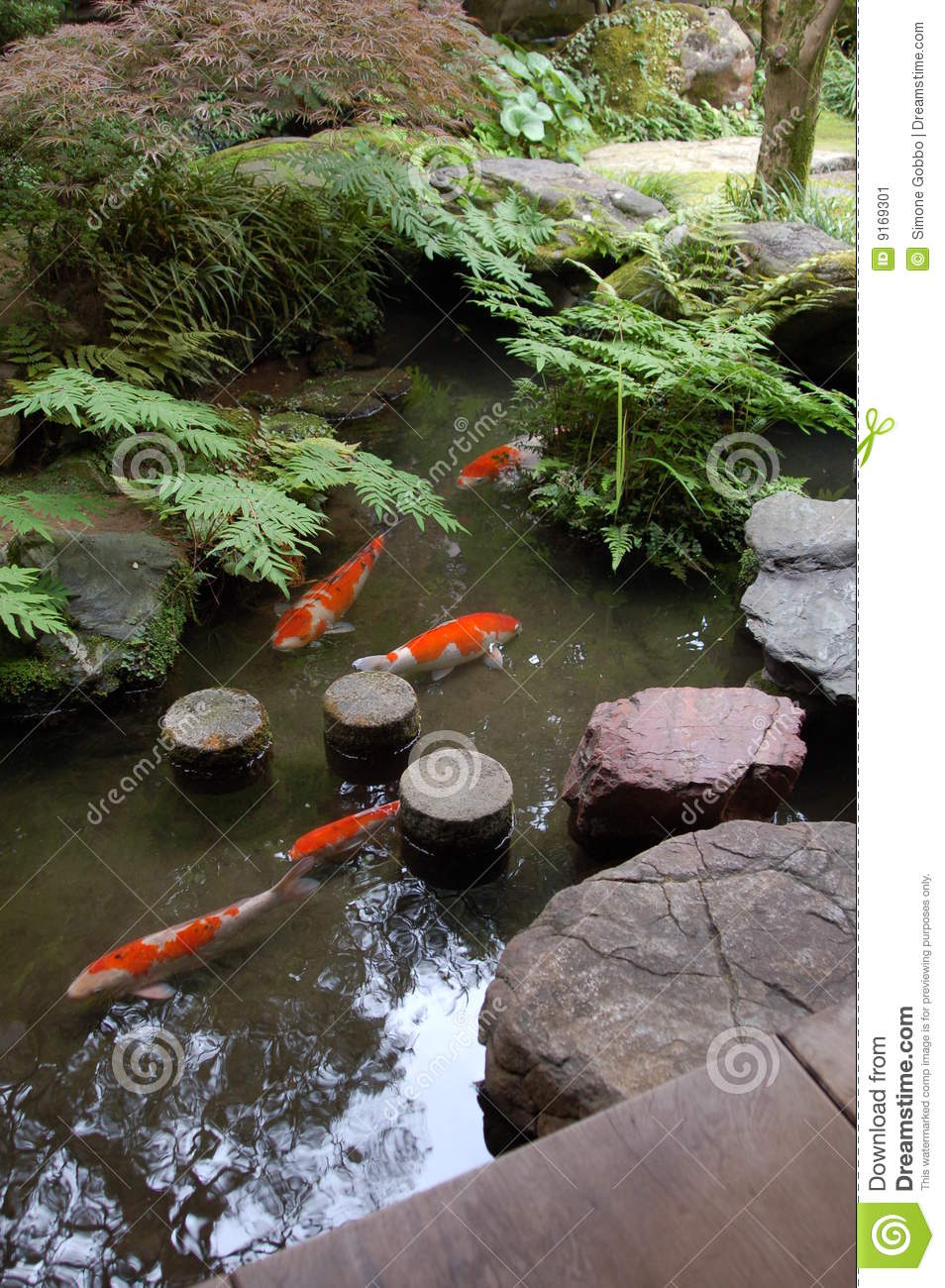 Zen Garden Koi Pond Stock Image Image Of Formal Design