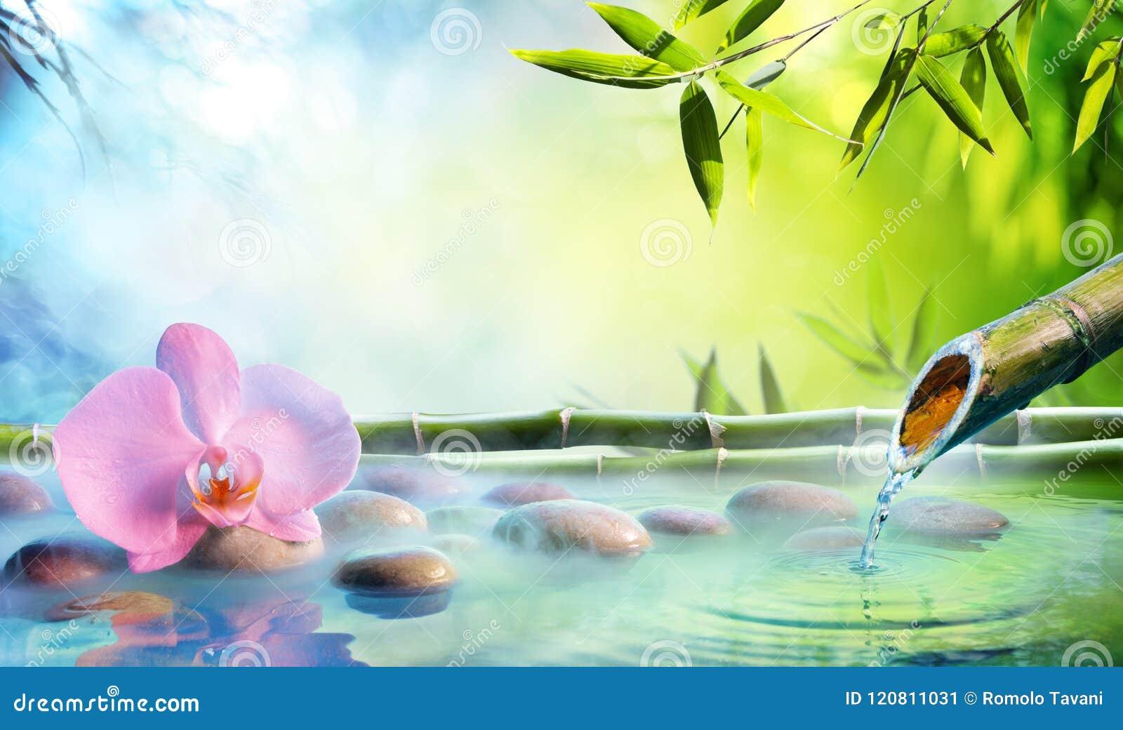 Zen Garden - Orchidee in Japanse Fontein