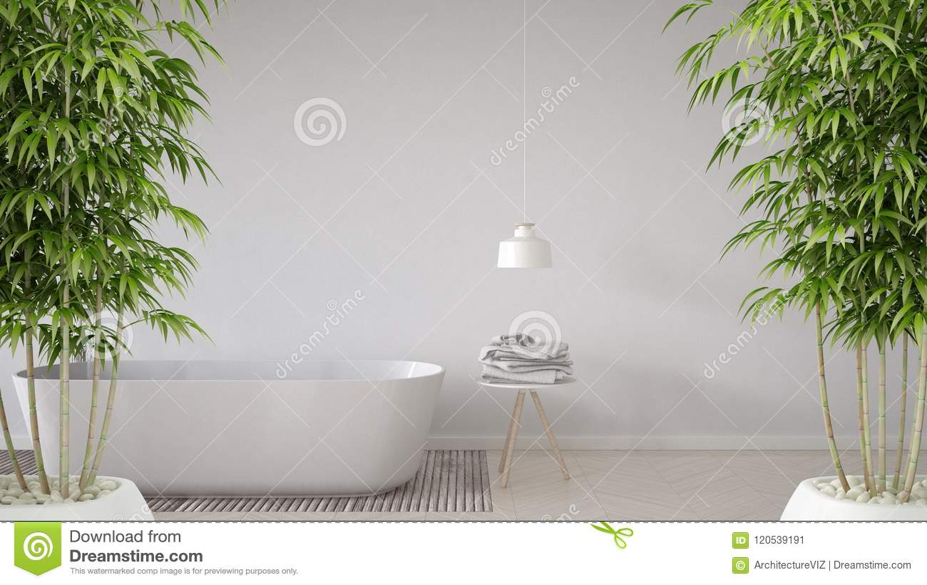Zen Interior With Potted Bamboo Plant, Natural Interior Design ...