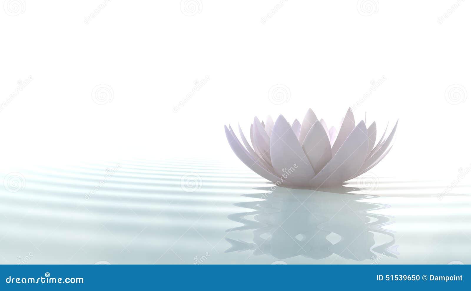 Zen lotus on water