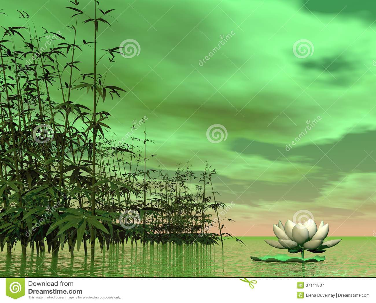 Zen nature 3d render stock illustration image of graphic 37111837 - Image zen nature ...