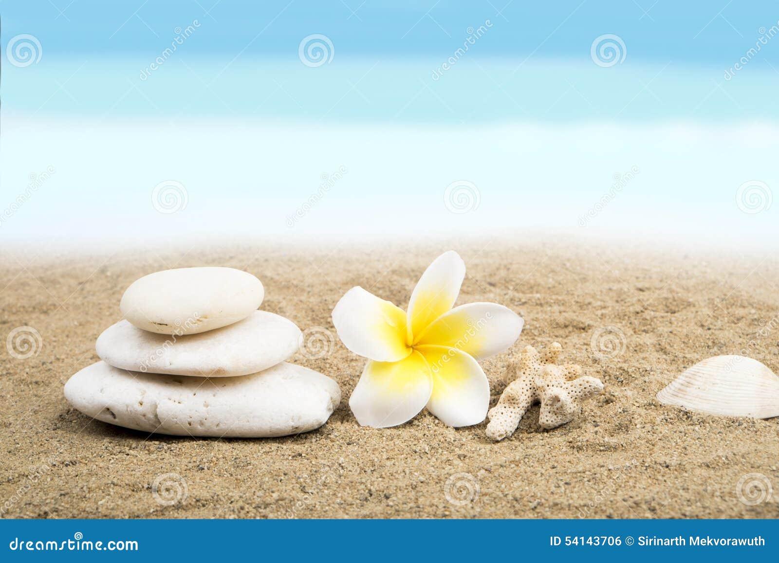 Zen- och brunnsortbegrepp på stranden