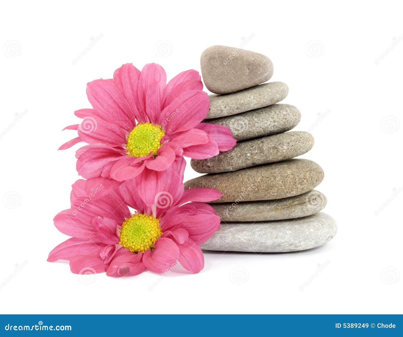 Zen spa stones with flowers stock image image 5389249 for Salon zen