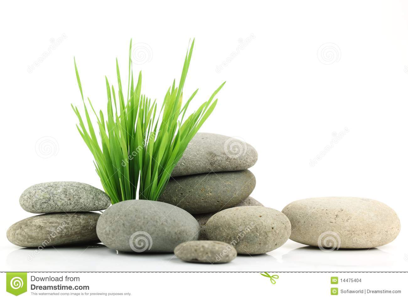 Zen Stone With Fresh Grass Stock Photo Image Of Dirt