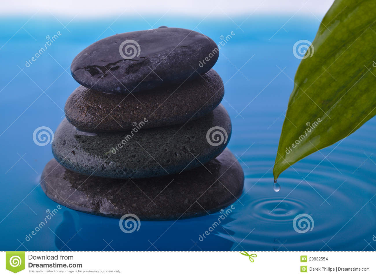 Zen Stone with Water ripples and Peace Plant Leaf with drop Zen Water Images
