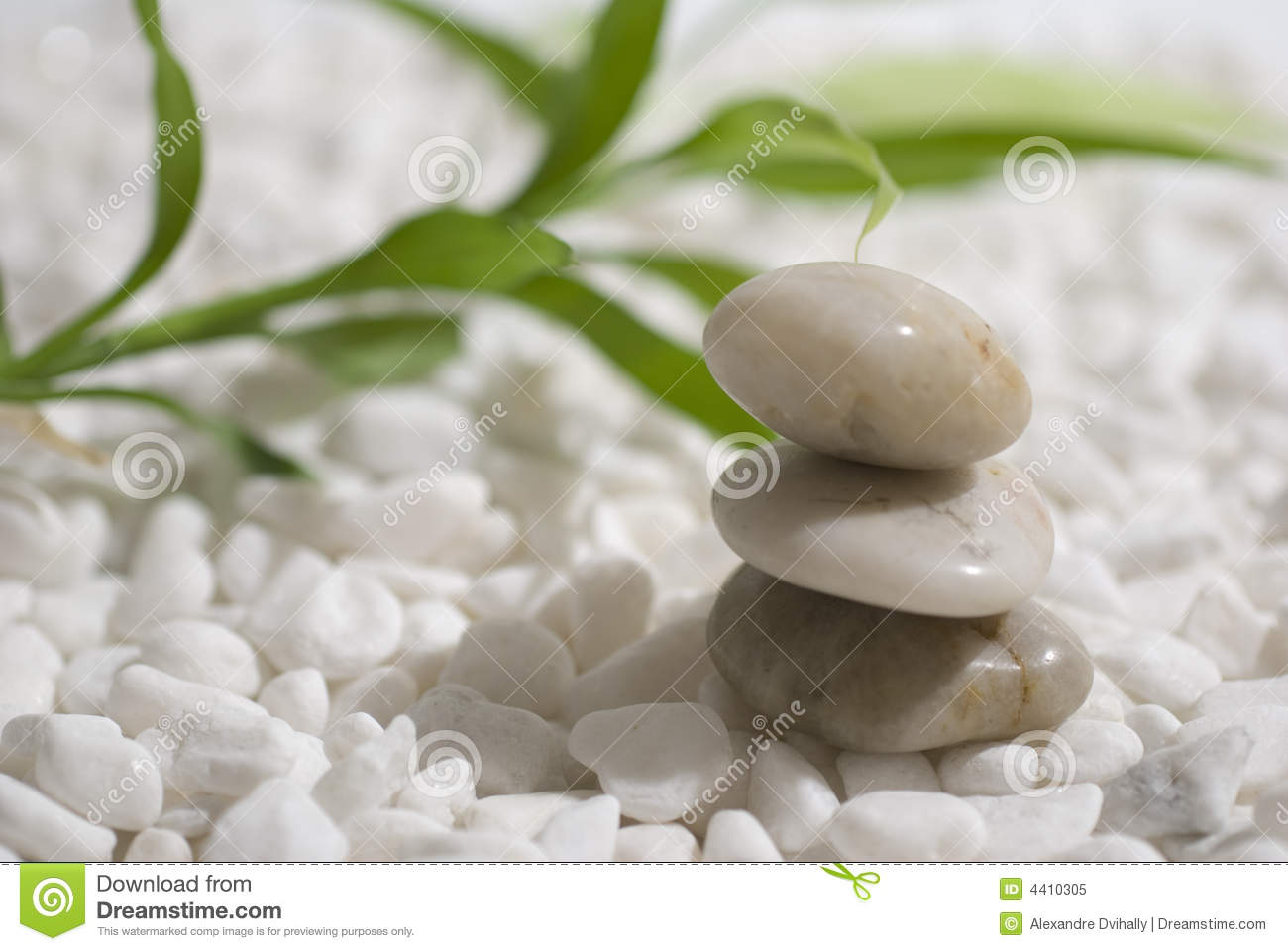 Zen Stones And Bamboo Jpg