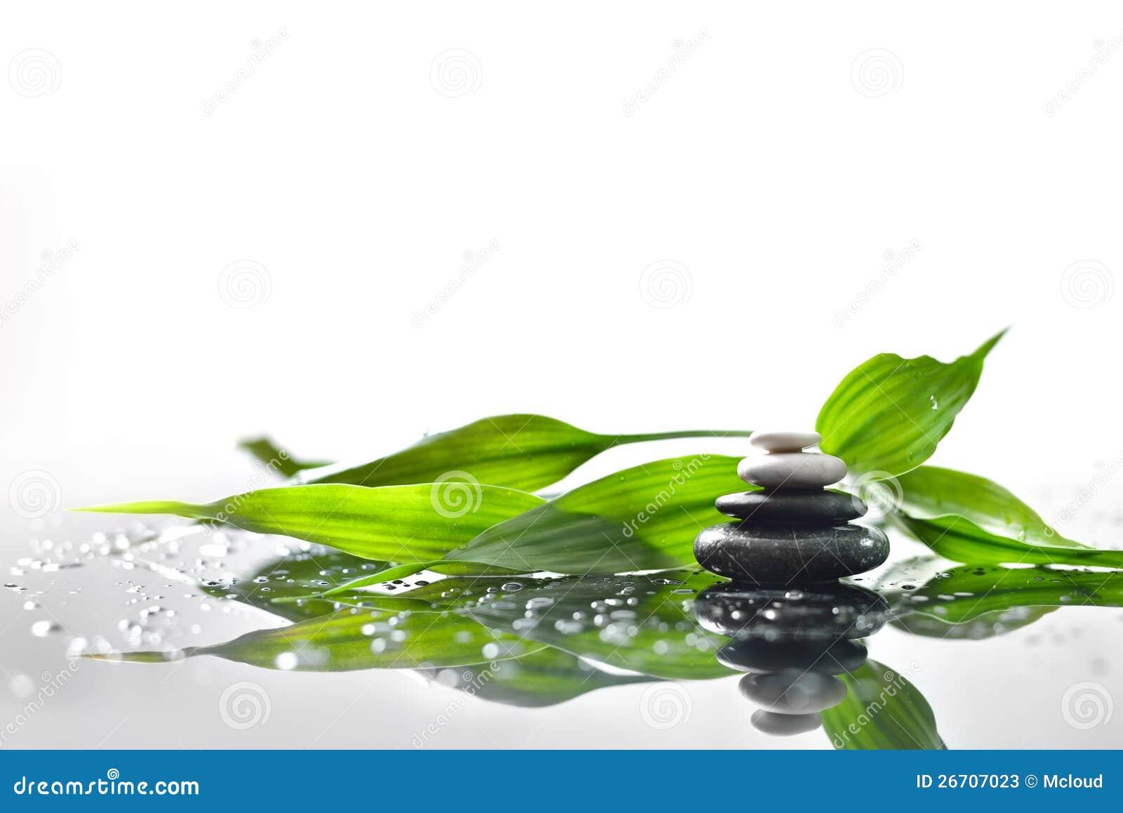 zen stones and green bamboo stock photos   image 26707023