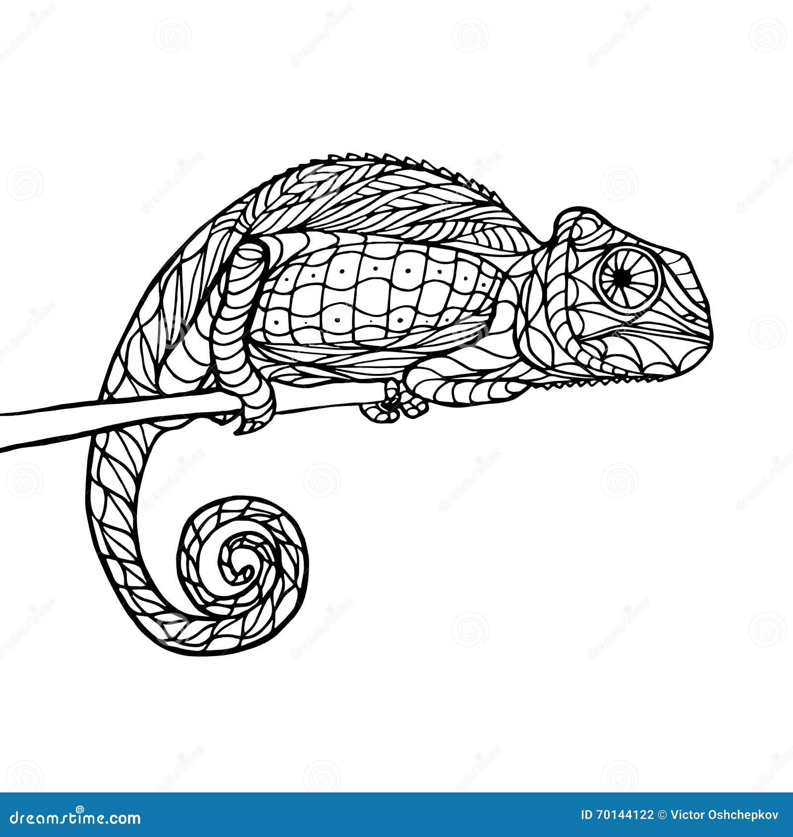 Zen Tangle Magic Chameleon Stock Vector Image Of Page