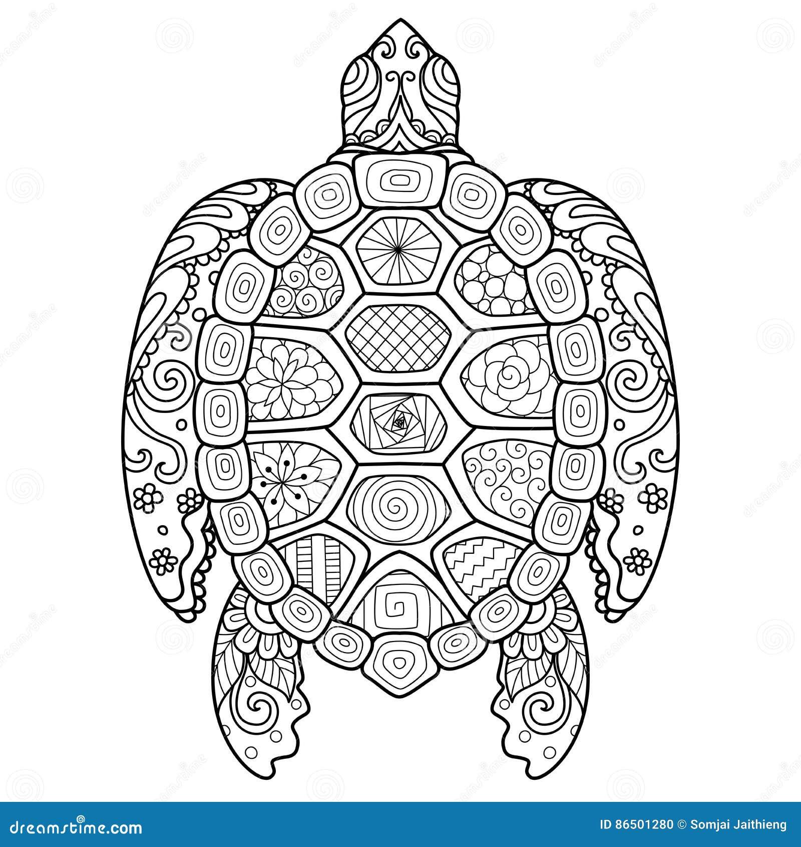 zendoodle stilisierte von der schönen schildkröte für