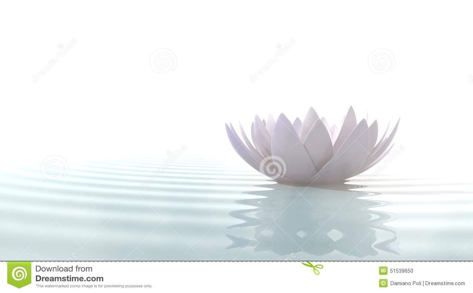 Zenlotusbloem op water