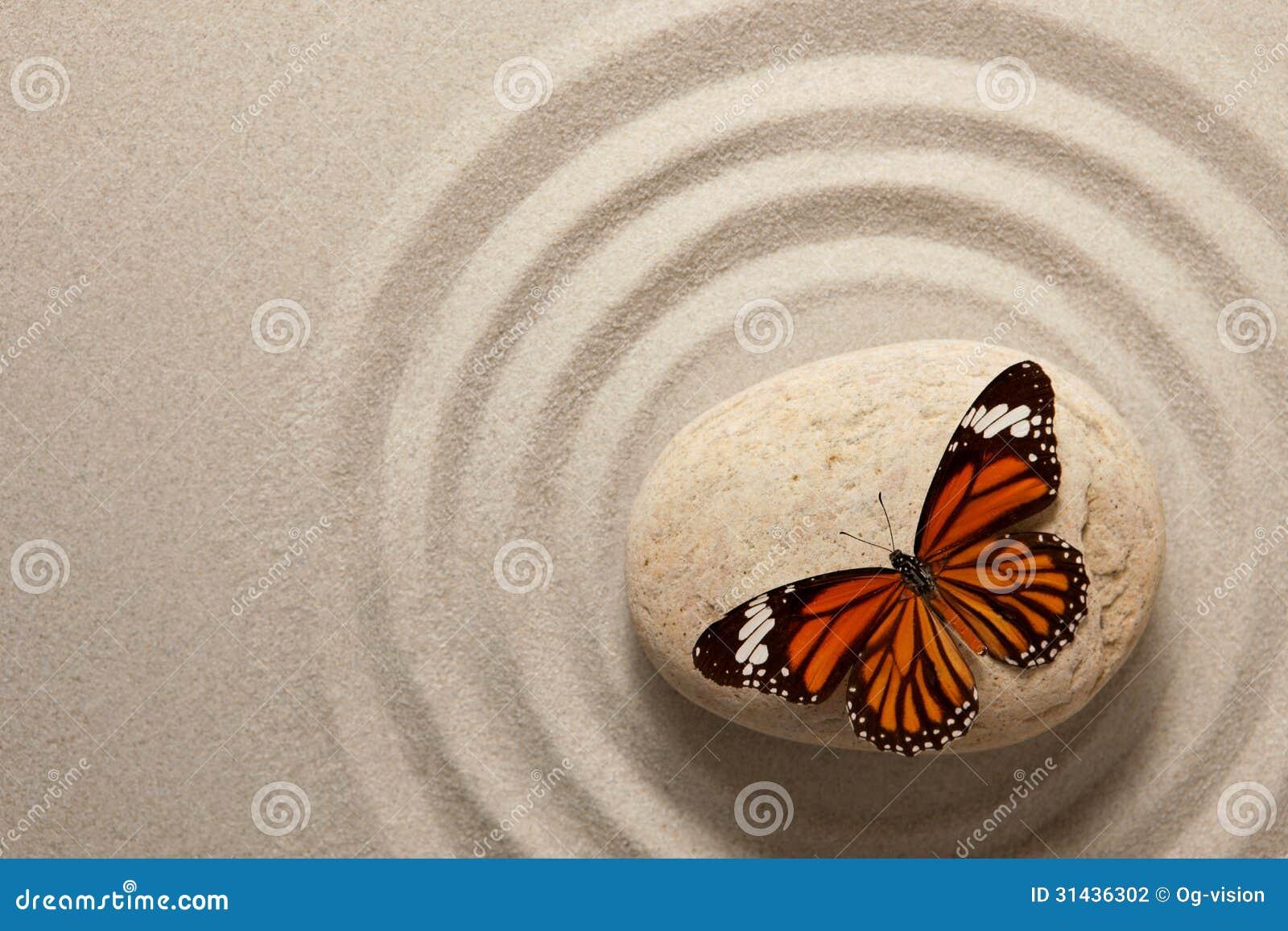 Zenrots met vlinder