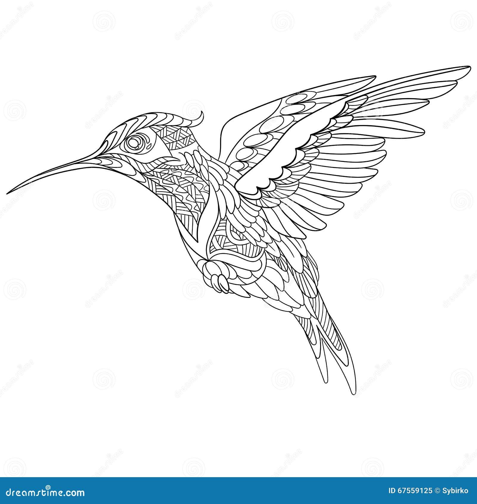 Zentangle传统化了蜂鸟