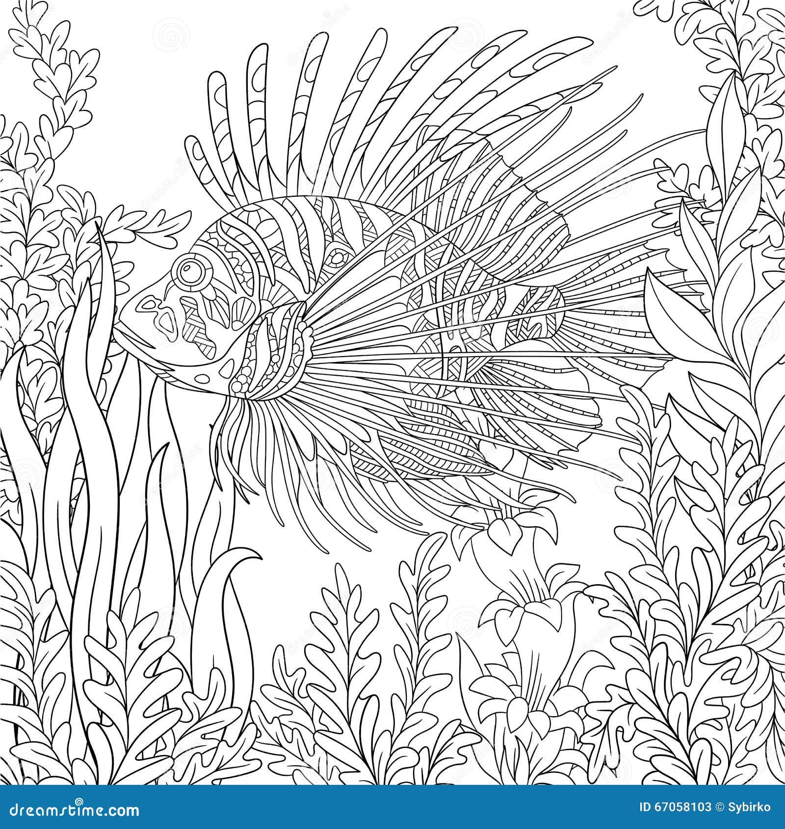 Zentangle传统化了zebrafish (蓑鱼)