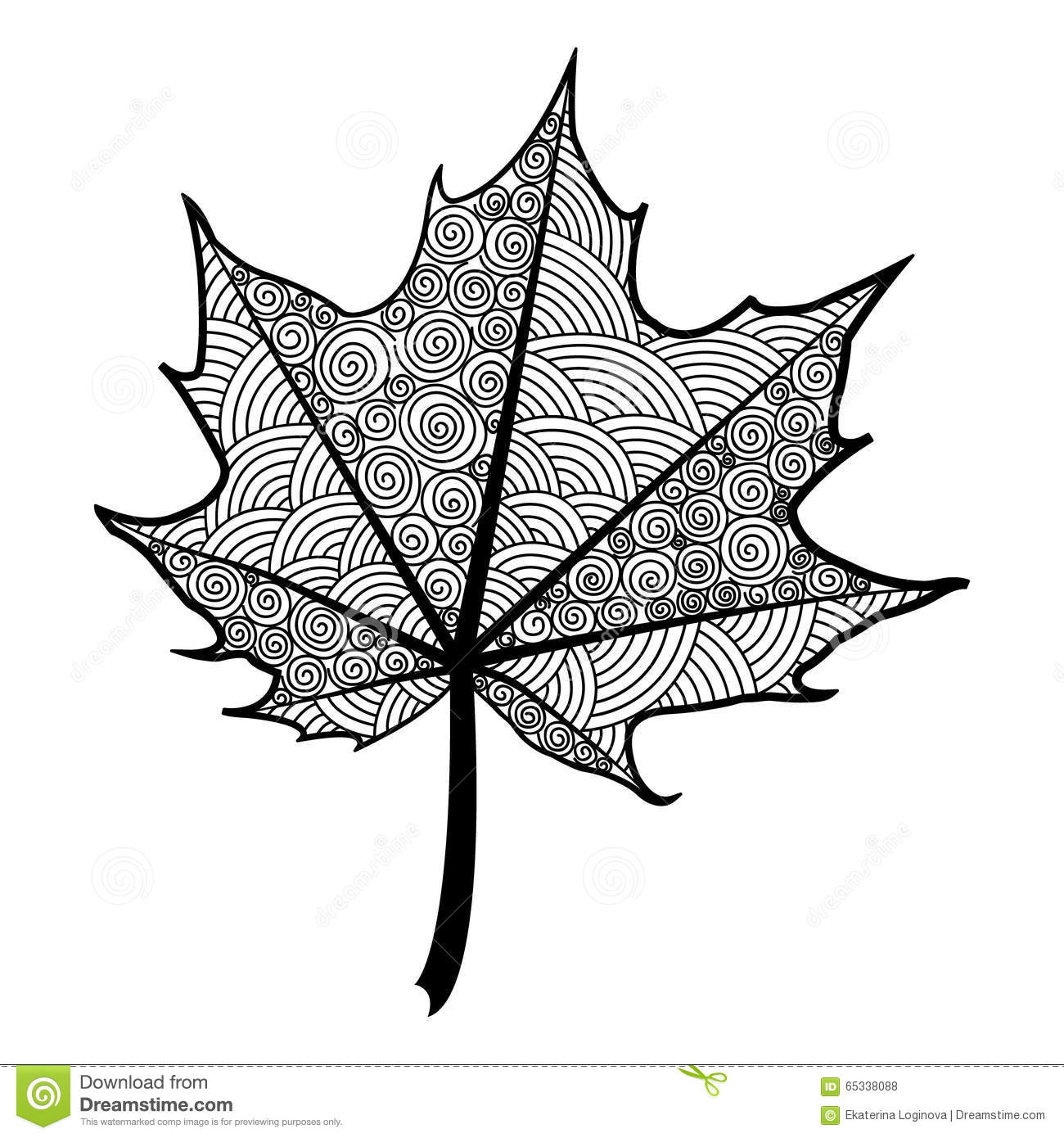 Zentangle Black And White Leaf Of The Tree Maple. Stock