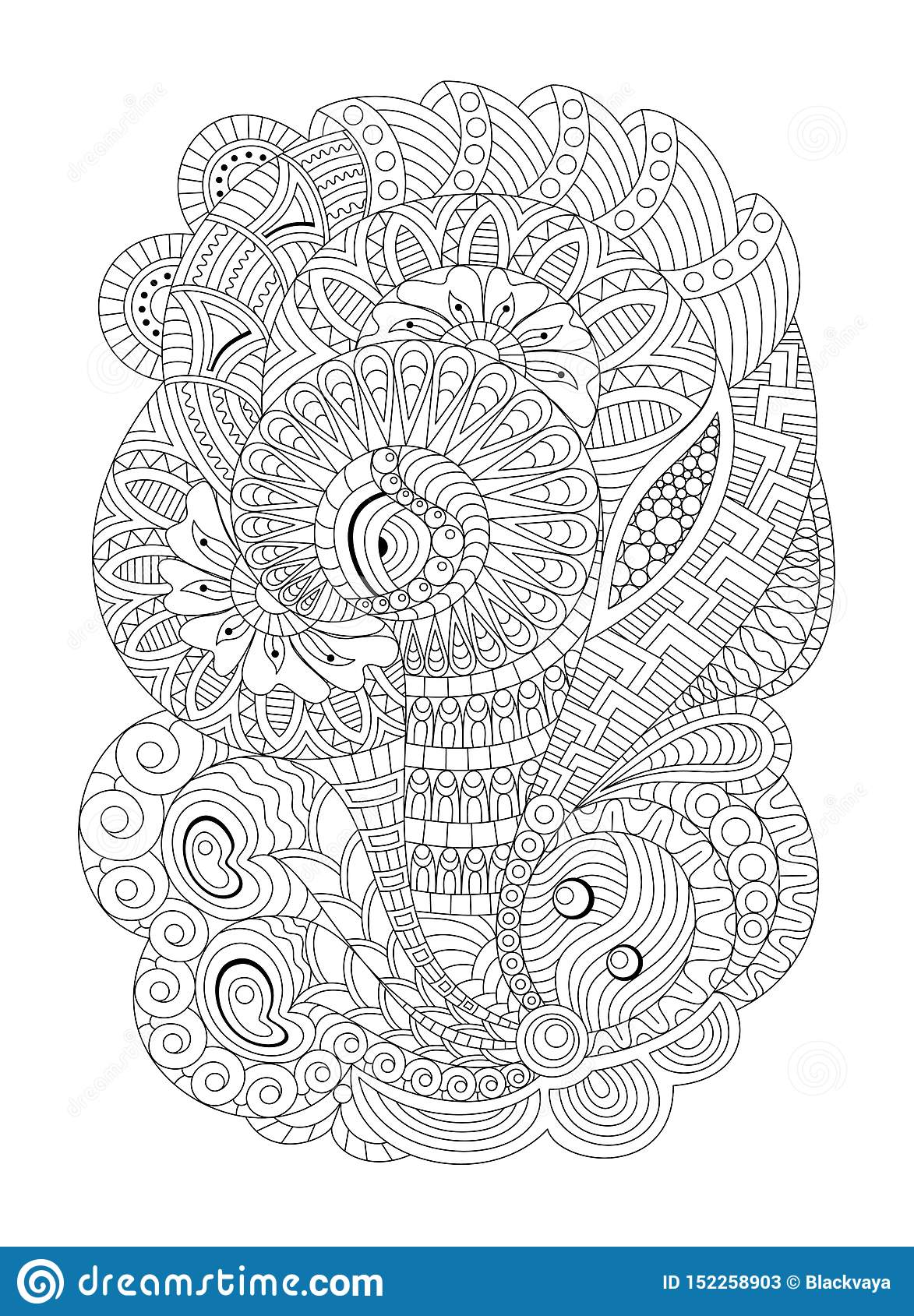zentangle coloring page for adults