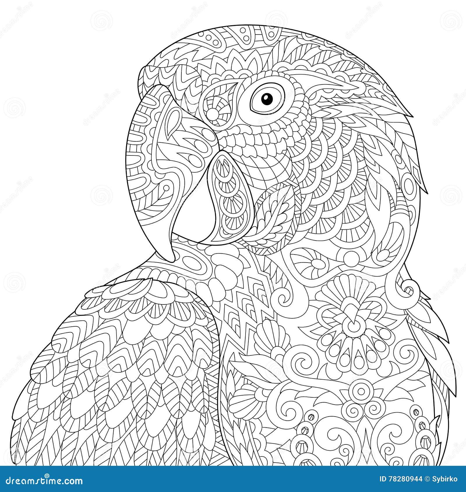 Zentangle Estilizou A Arara Ilustracao Do Vetor Ilustracao De