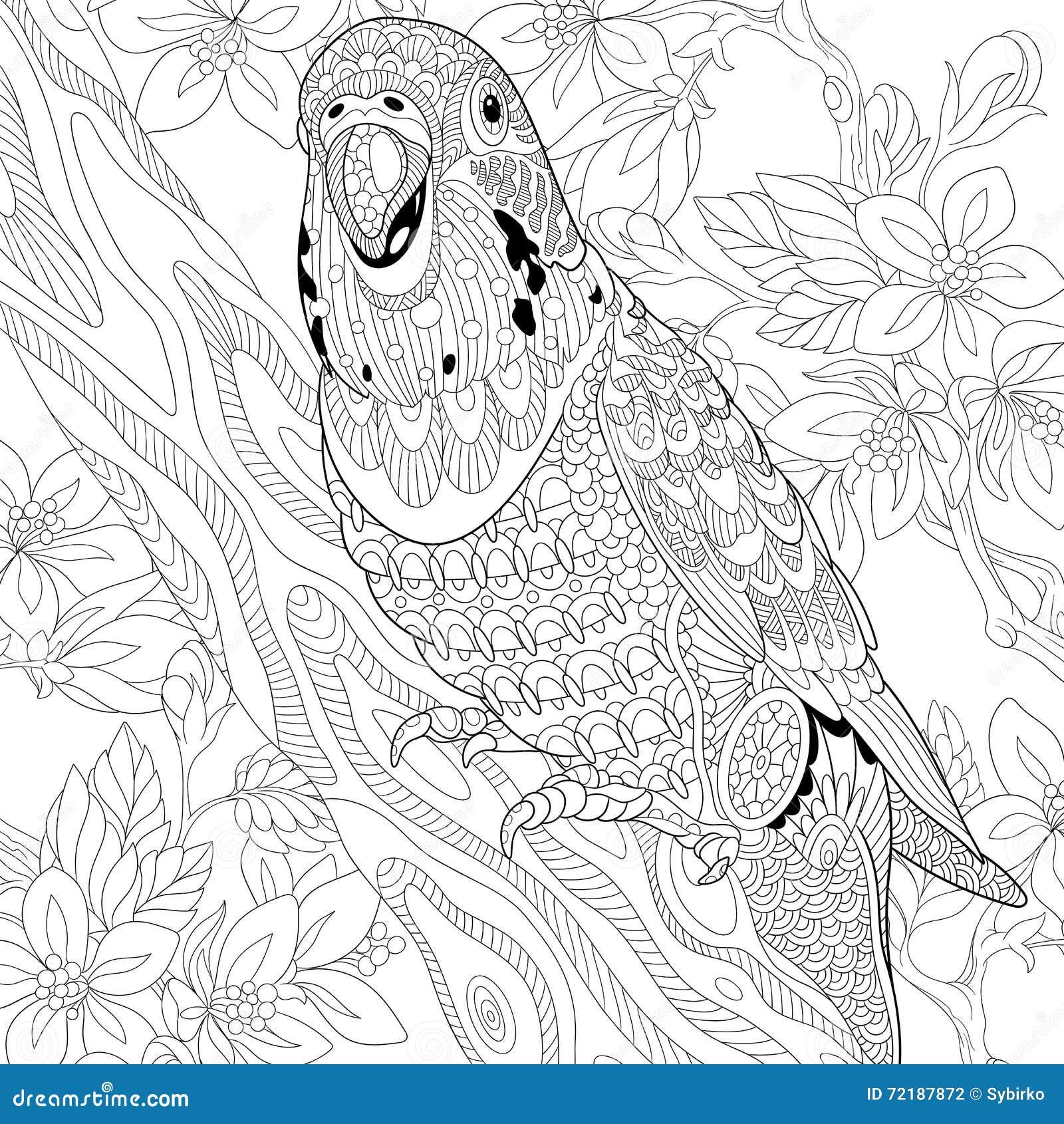 Zentangle estilizou o papagaio do budgie