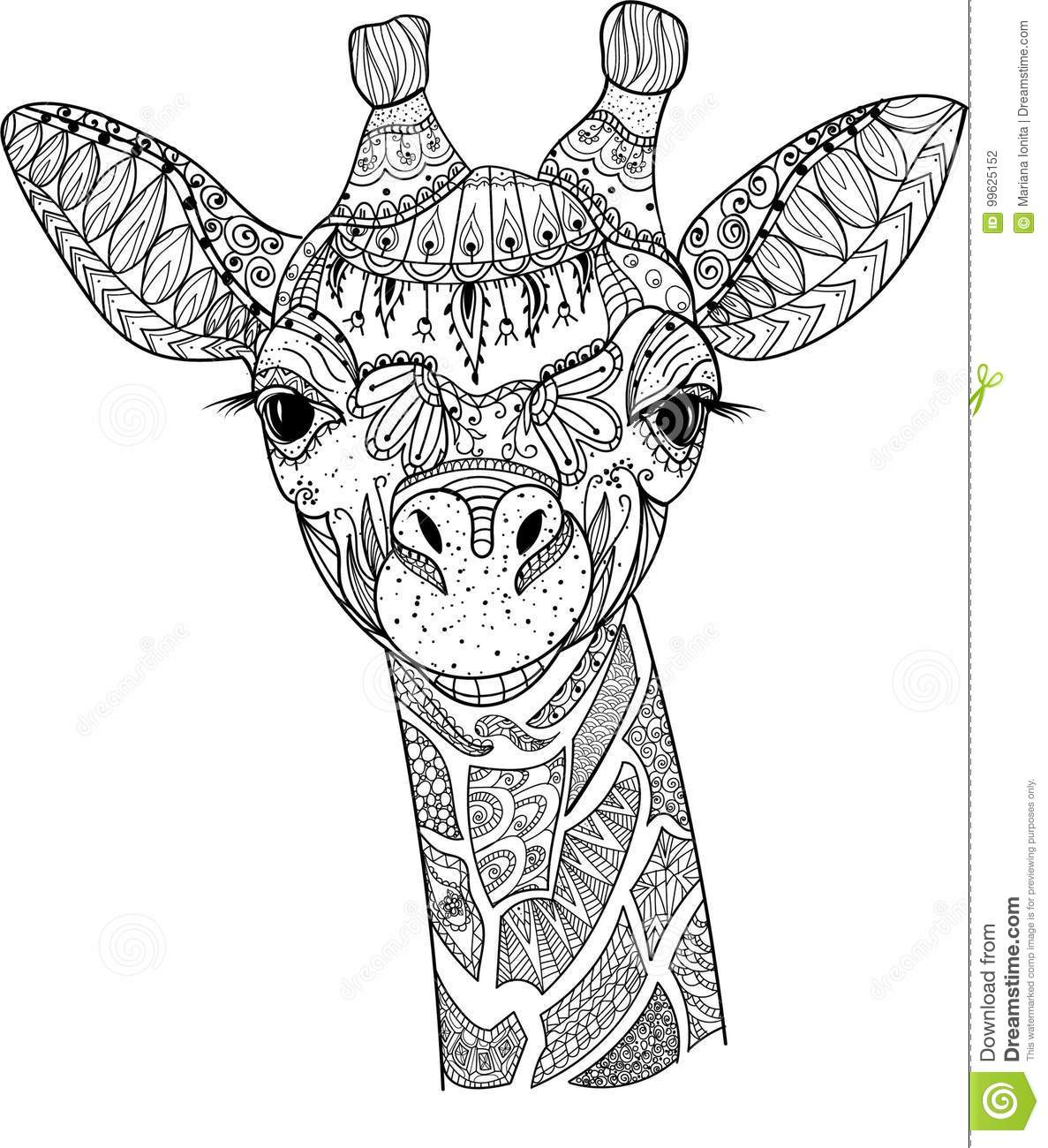 girraffe coloring pages Zentangle giraffe stock vector. Illustration of decoration   99625152 girraffe coloring pages