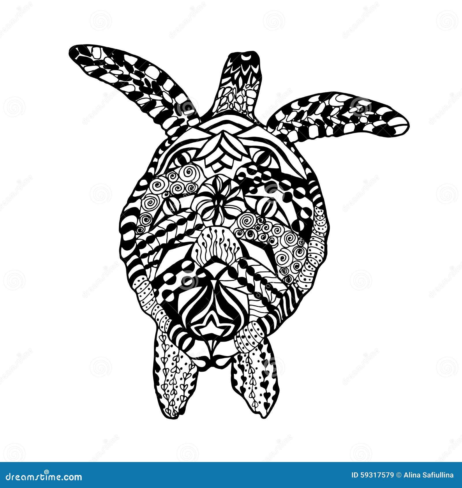 Großartig Anatomie Einer Schildkröte Ideen - Menschliche Anatomie ...